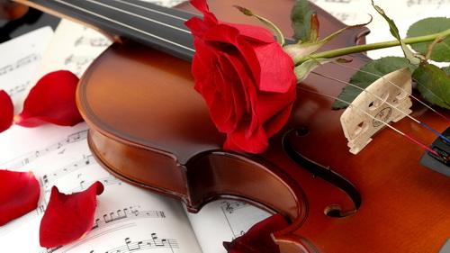 Tiếng vĩ cầm - Nhật Kim Anh - ca khúc nhạc tình yêu buồn nổi tiếng của nhạc sĩ Nguyễn Hồng Thuận