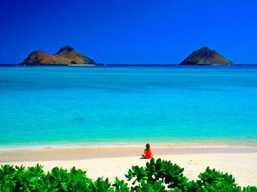 Biển hát chiều nay - một trong những bài hát hay về biển đảo - ca khúc nổi tiếng của nhạc sĩ Hồng Đăng