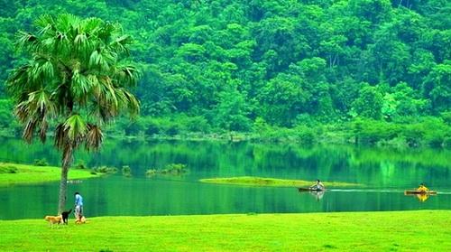 Bài ca đi cùng năm tháng: Một đời người một rừng cây, sáng tác: Trần Long Ẩn, trình bày: Quang Dũng, Hồng Nhung